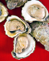 Raw oysters opened on a red background