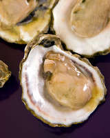 3 oysters opened on purple background ready to be eatened